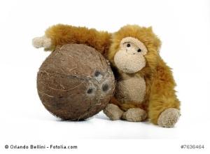 Cocco con Scimmietta b