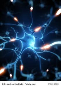 3d rendered illustration - nerve cell